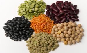 Можно употреблять растительный белок при панкреатите.