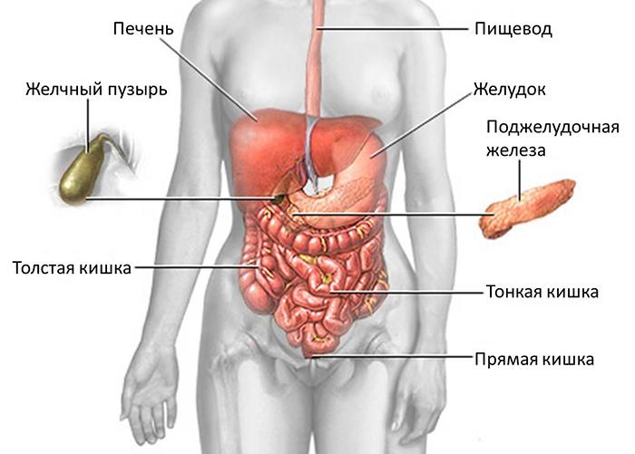 Характерные признаки заболеваний поджелудочной железы