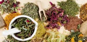 Какие сборы трав улучшают пищеварение