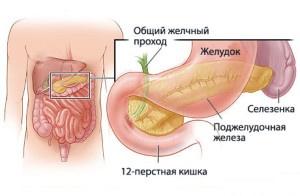 Энергетический канал поджелудочной железы