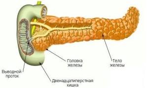 Почему может быть увеличена поджелудочная железа